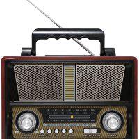 FM radio hidden camera